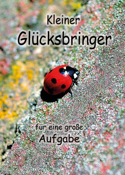 """Postkarte groß """"Kleiner Glücksbringer für eine große Aufgabe""""  Marienkäfer"""